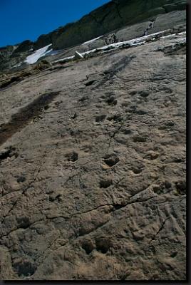 Zkamenělé otisky stop prvních dinosaurů na šikmé skalní stěně poblíž Mont Blancu
