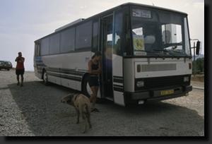 Prase u autobusu na sedle Col de Vergio