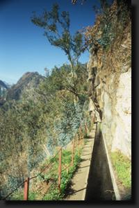 Typická madeirská levada