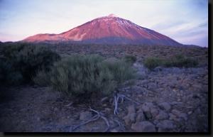 Symbolem národního parku je sopka Pico del Teide