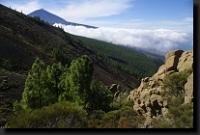 Zájezd Tenerife