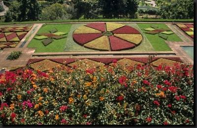 Krásy madeirských zahrad