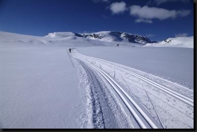 Parádně udržované běžecké tratě na nekonečných pláních Hardangerviddy
