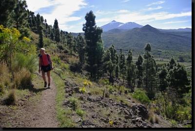 Jednodenní túry v pohoří Teno