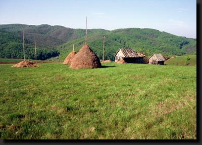 Krajina rumunského Banátu