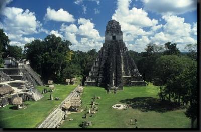 Mezi pyramidami v Tikalu